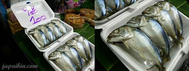 งานปลาทูแม่กลอง-24